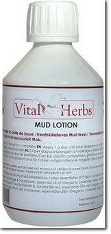 MUD LOTION - Gale de Boue